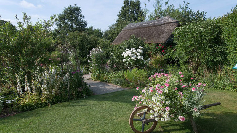RHS Rosemoor, Torrington, Devon