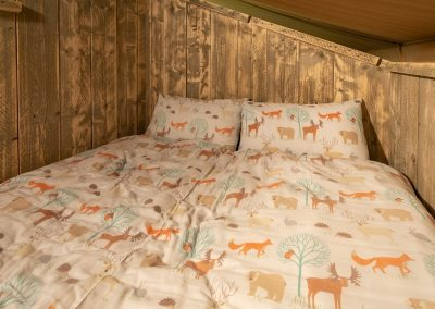 Birch cabin bed