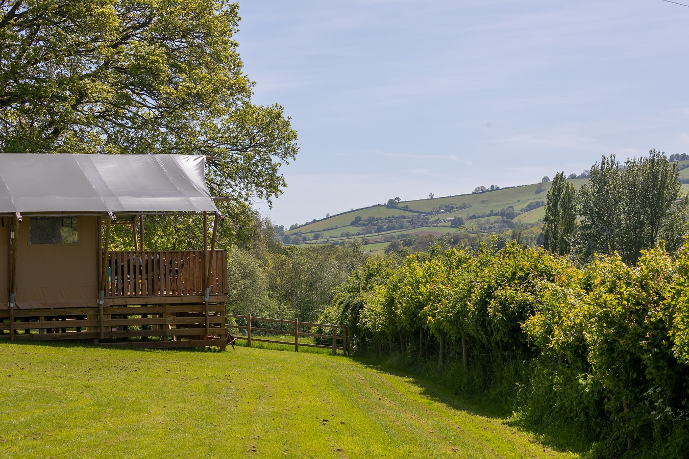 Our Birch Glamping Safari Tent with Exe Valley view