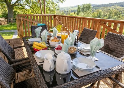 Breakfast on the veranda overlooking the Exe Valley