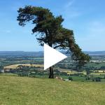 Raddon Top Video