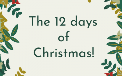 Our version of the 12 days of Christmas!